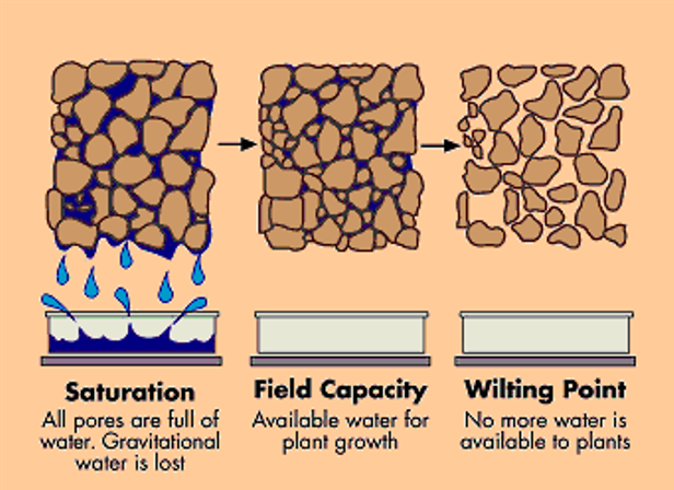 Diagram depicting saturation, field capacity and wilting point